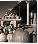Pumpkins At The Farm Market October Canvas Print