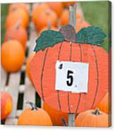 Pumpkins For Sale II Canvas Print