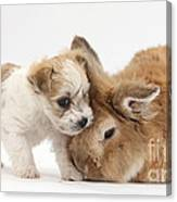 Pup And Rabbit Canvas Print