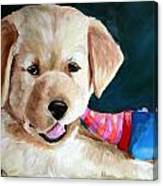 Pup And Toy Canvas Print