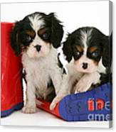 Puppies With Rain Boats Canvas Print