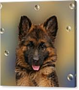Puppy With Bubbles Canvas Print