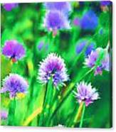 Purple And Green Chive Watercolor Canvas Print