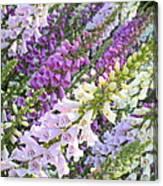 Purple And White Foxglove Square Canvas Print