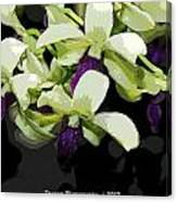 Purple And White Orchid Fx  Canvas Print
