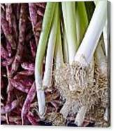Purple Beans And Green Onions Canvas Print