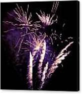 Purple Firework Canvas Print