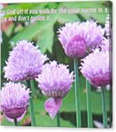 Purple Flowers In The Field Canvas Print