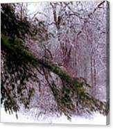 Purple Morning Frost Canvas Print