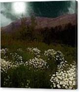 Purple Mountain Meadow Canvas Print