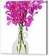 Purple Orchid In Bottle Canvas Print