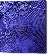Purple Spiderweb Canvas Print