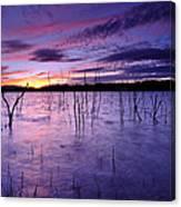 Purple Waters Canvas Print