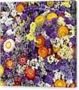 Purple Yellow Orange White Cut Flowers Canvas Print