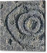 Pu'u Loa Petroglyphs Canvas Print
