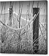 Pylons On The Beach Canvas Print