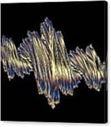 Quaternionic Fractals Canvas Print