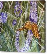 Queen Of Spain Fritillary And Lavender II Canvas Print