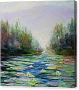 Quiet Stream - Cascade Mountains Canvas Print
