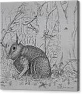 Rabbit In Woodland Canvas Print