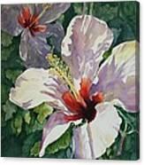 Radiant Light - Hibiscus Canvas Print