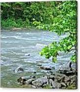 Raging River Canvas Print