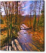 Raging River Near Preston Canvas Print