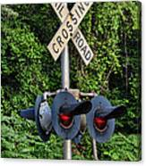 Railroad Crossing Light And Greenery Canvas Print