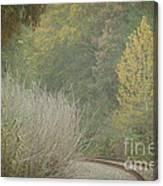 Rails Curve Into A Dreamy Autumn Canvas Print