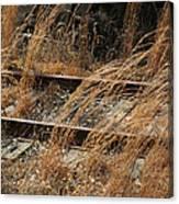 Rails Retired Canvas Print