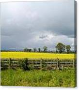 Rain Clouds Over Canola Field Canvas Print