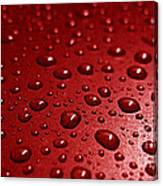 Rain Drops Bloody Red  Canvas Print