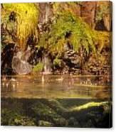 Rain Forest Pool Canvas Print