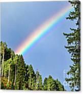 Rainbow Closeup Canvas Print