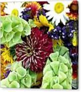 Rainbow Floral Display Canvas Print