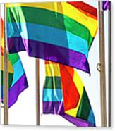 Rainbow Pride Flags Against White Background Canvas Print