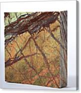 Rainforest Green Marble Canvas Print