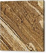Rajasthan Sandstone Marble Streaks Canvas Print