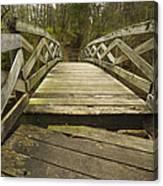 Ramsey Creek Scene 16 Canvas Print