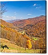 Randolph County West Virginia Canvas Print