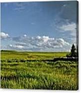 Rangeland View Canvas Print