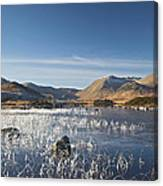 Rannoch Moor - Winter Canvas Print