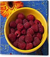 Raspberries In Yellow Bowl Canvas Print