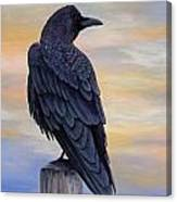 Raven Beauty Canvas Print