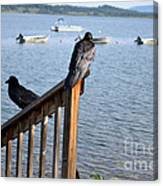 Raven On Watch Canvas Print