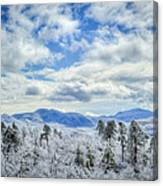 Raven's View In Winter Canvas Print