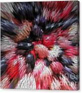 Red And Black Explosion #01 Canvas Print