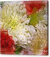 Red And White Mums Photoart Canvas Print