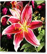Red And White Tiger Lily Canvas Print