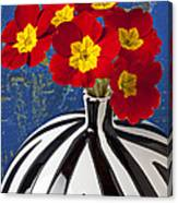 Red And Yellow Primrose Canvas Print